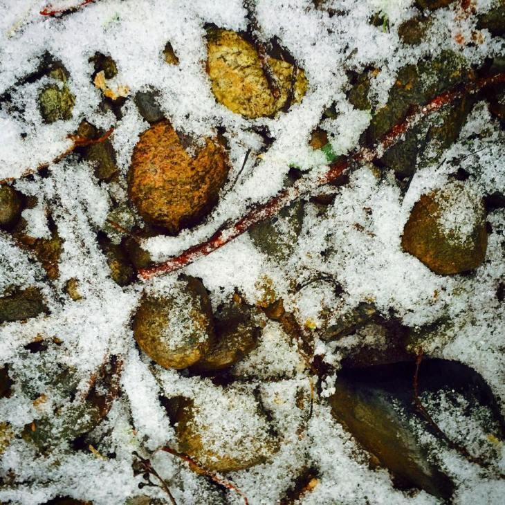 rock in the snow.jpg