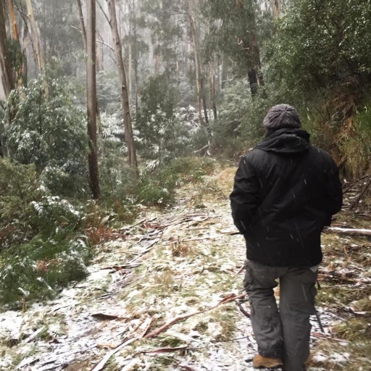 snow walk.jpg