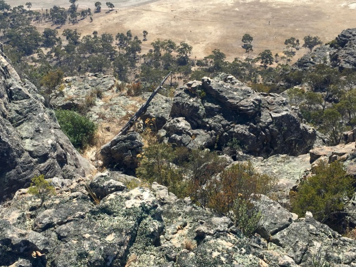 arapiles downview - 1